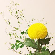 福岡本部OS01-4