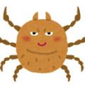 ダニから感染する病気、疥癬