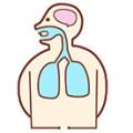 呼吸を妨げるびまん性汎細気管支炎