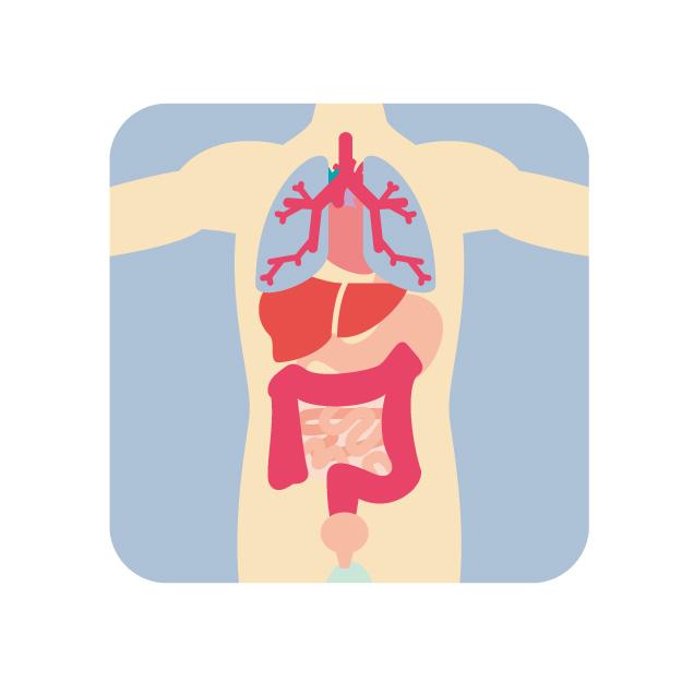 多 臓器 不全 と は