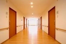 広々とした開放的で明るい廊下