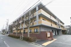 ミモザ横濱花水木苑