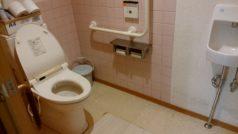 共用のトイレは車椅子対応の身障者用設置が6箇所あり安心です