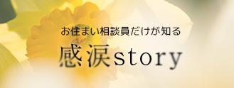 感涙Story