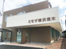 ミモザ横浜境木